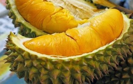 Bolehkah makan durian saat hamil muda